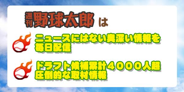 週刊野球太郎はニュースにはない奥深い情報を毎日配信 ドラフト候補累計4000人超 圧倒的な取材情報